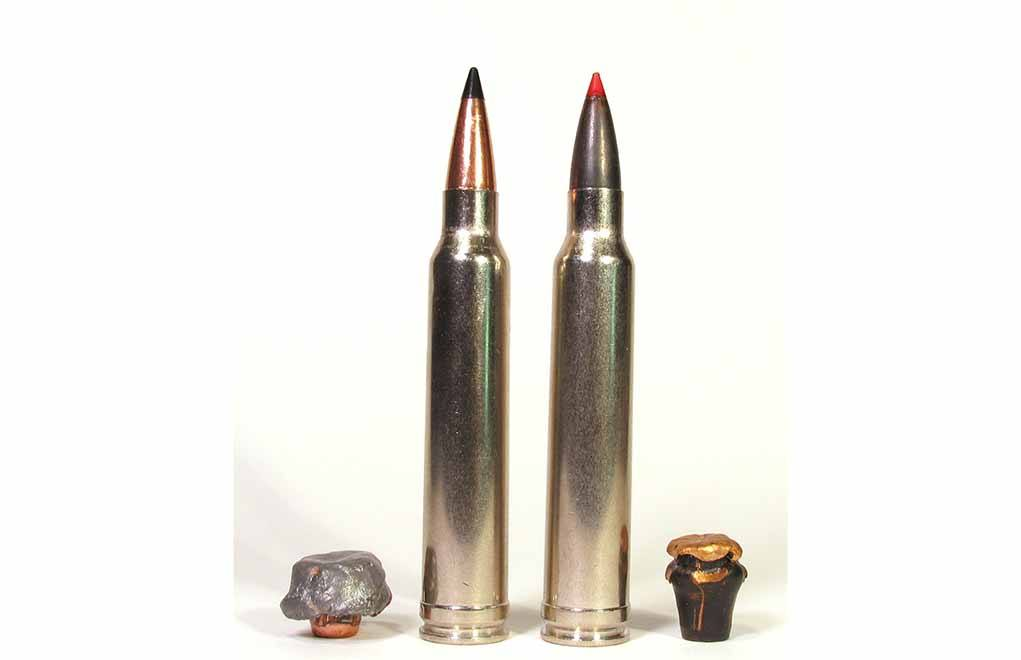 These two .300 Winchester Magnum loads have bullets with identical sectional densities. However, their construction and terminal performance vary greatly.