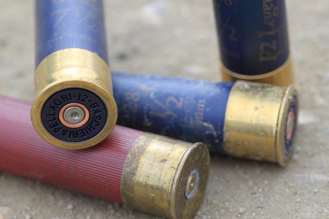 The Best Shotgun Ammo for Home Defense